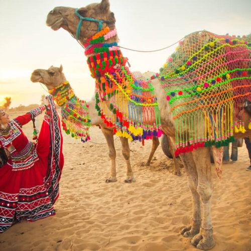 Rajasthan masthead